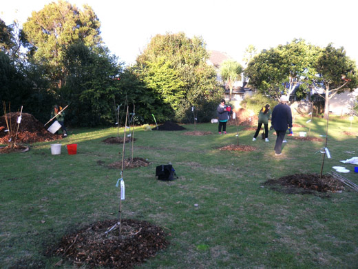Plant a community orchard or garden